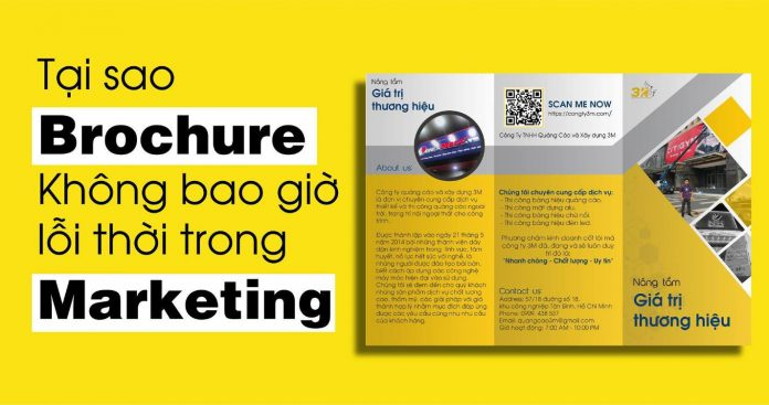 brochure trong marketing